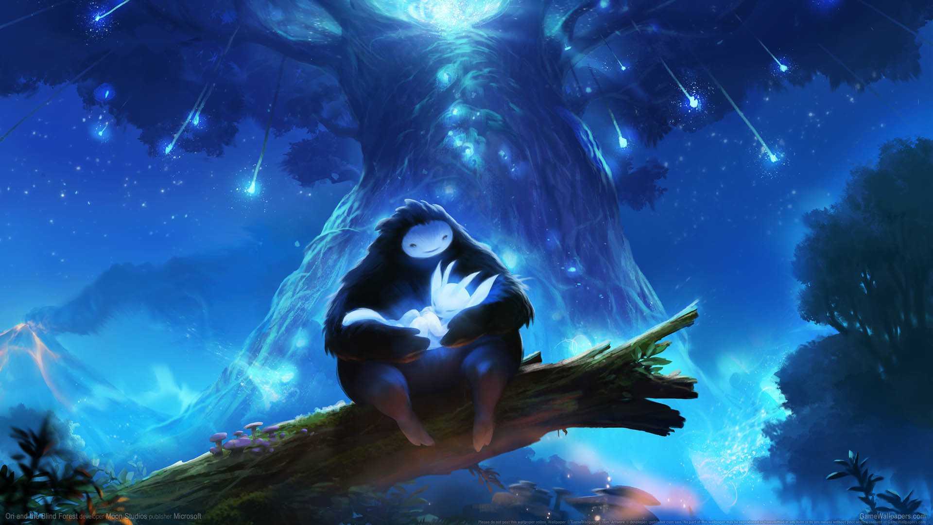 Ori And The Blind Forest Wallpaper 01 1920x1080