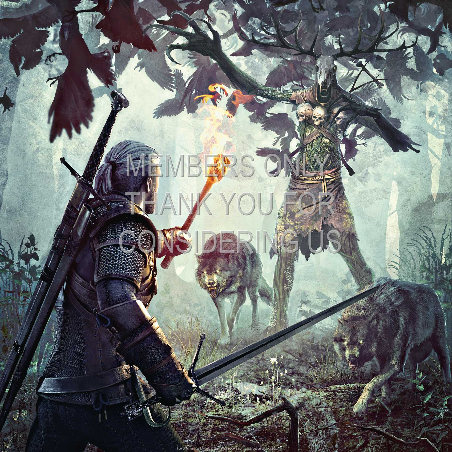 The Witcher 3: Wild Hunt 1080p Horizontal Handy Hintergrundbild 07