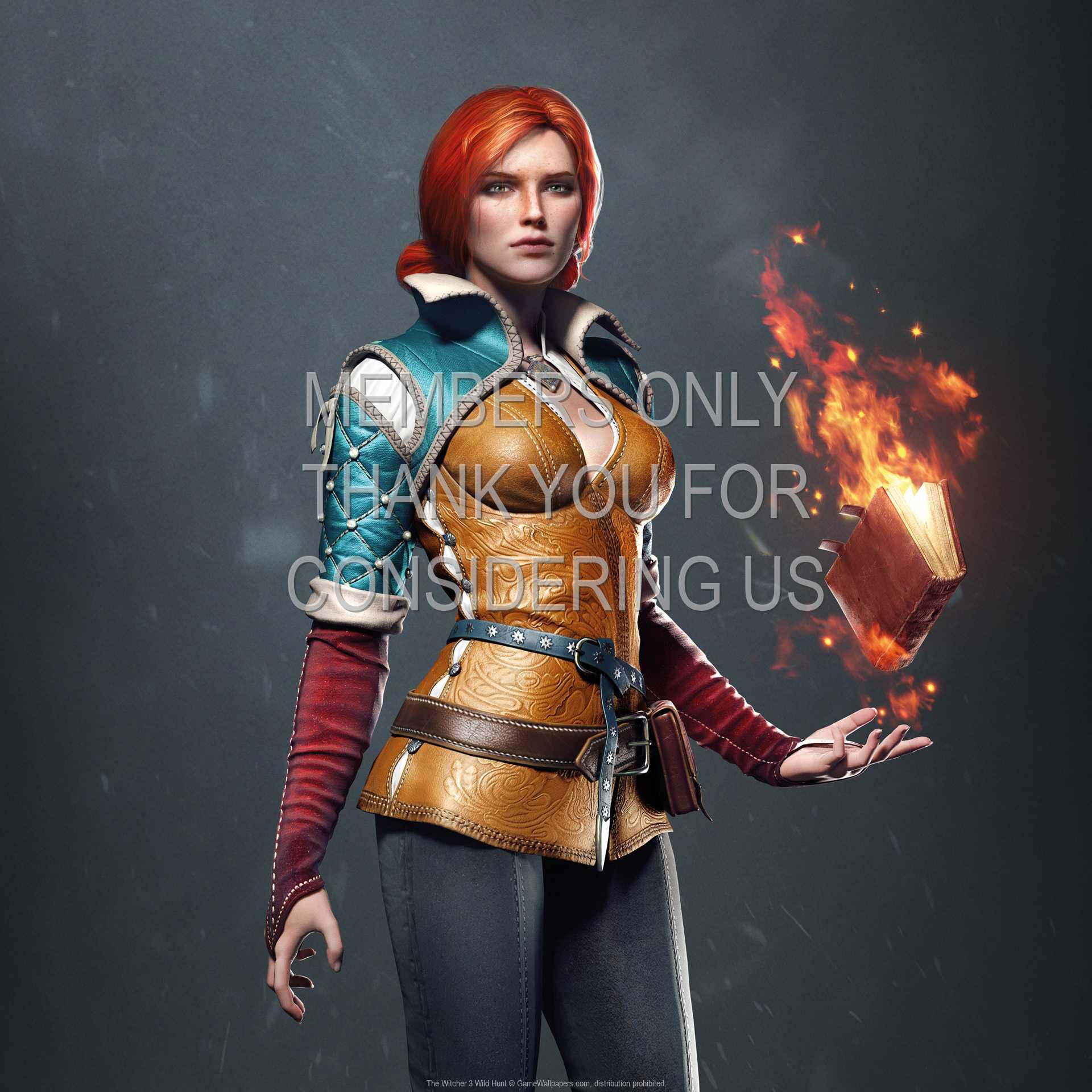 The Witcher 3: Wild Hunt 1080p Horizontal Handy Hintergrundbild 12