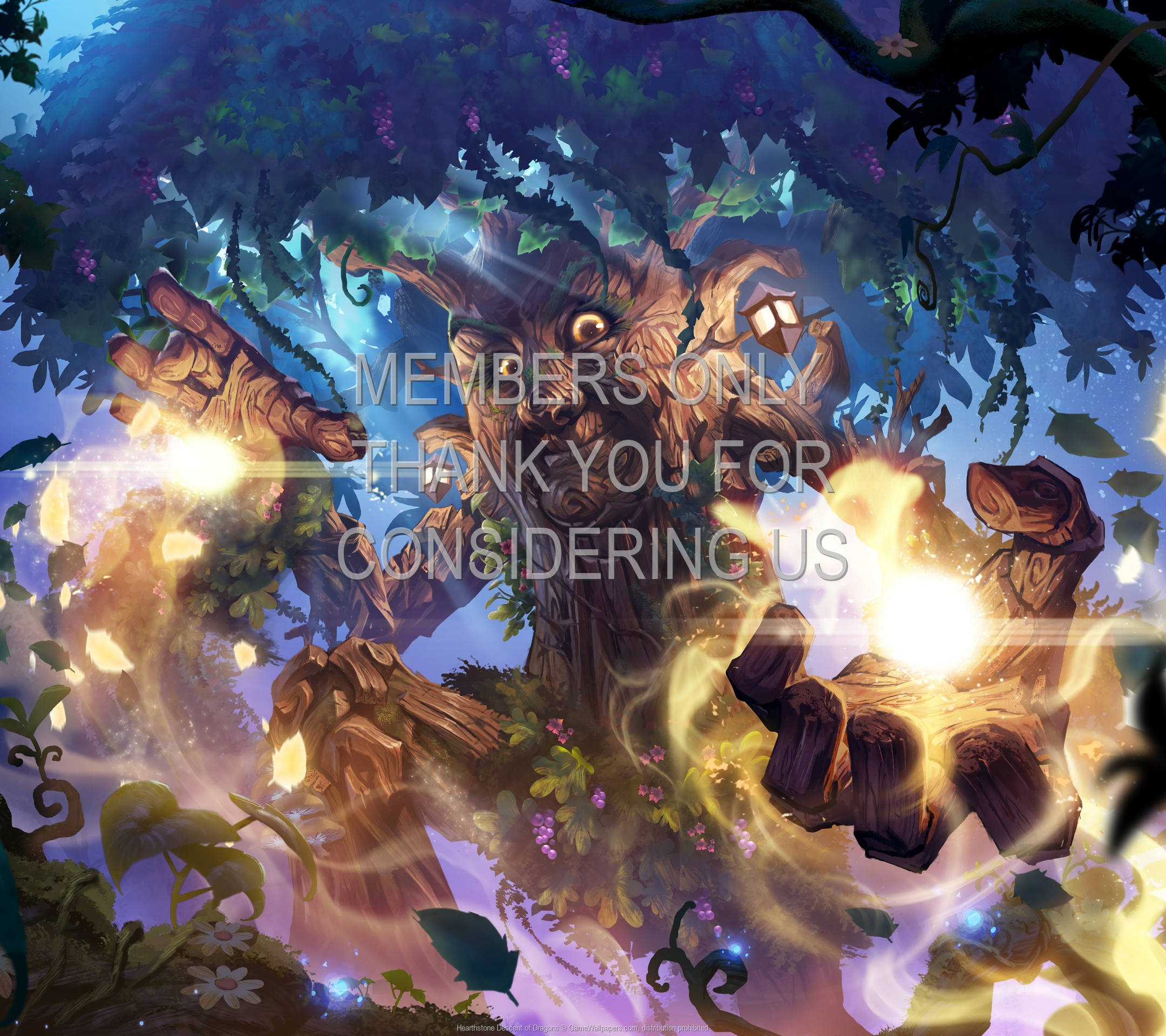 Hearthstone: Descent of Dragons 1920x1080 Handy Hintergrundbild 02