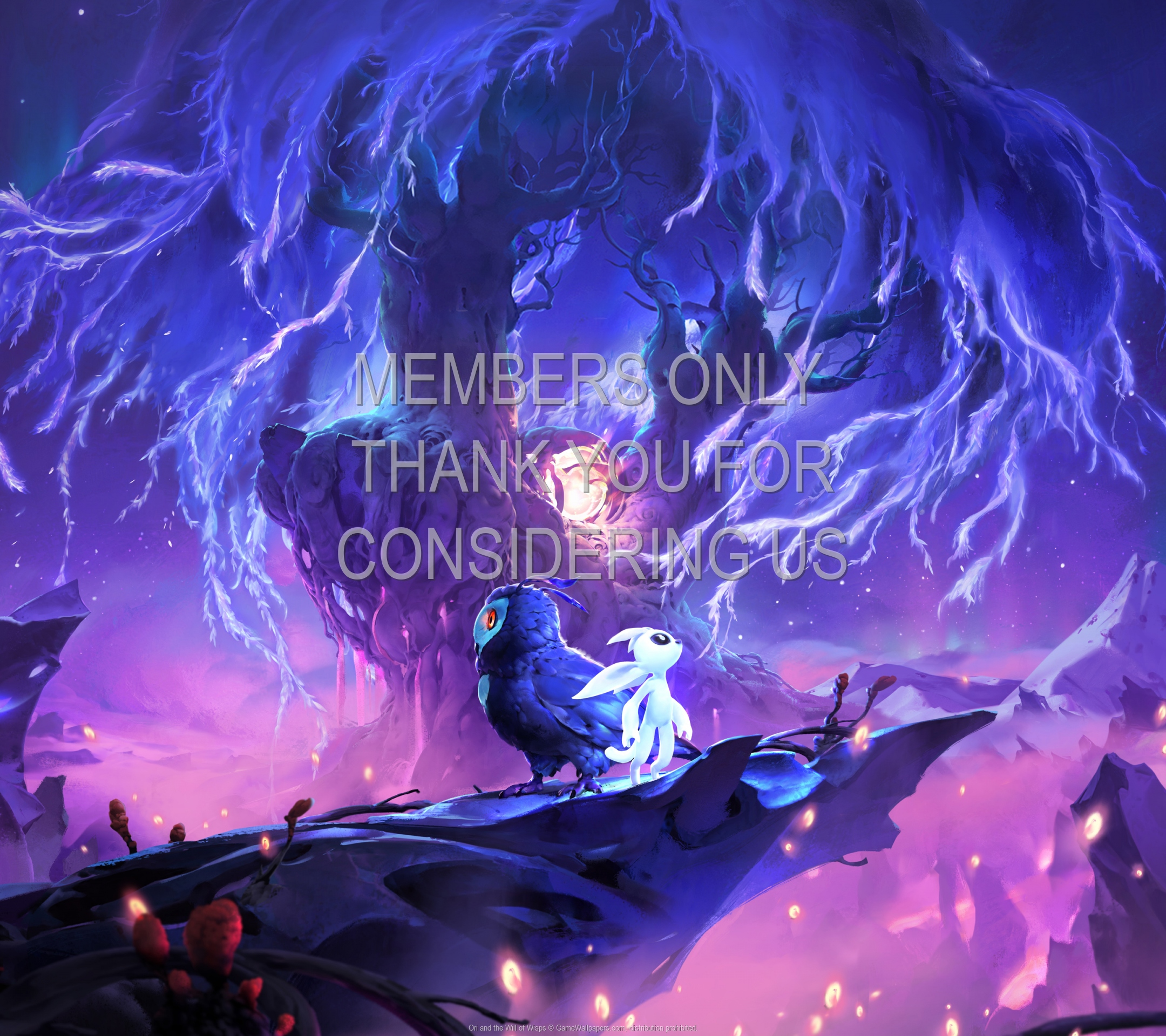Ori and the Will of Wisps 1920x1080 Mobile wallpaper or background 02