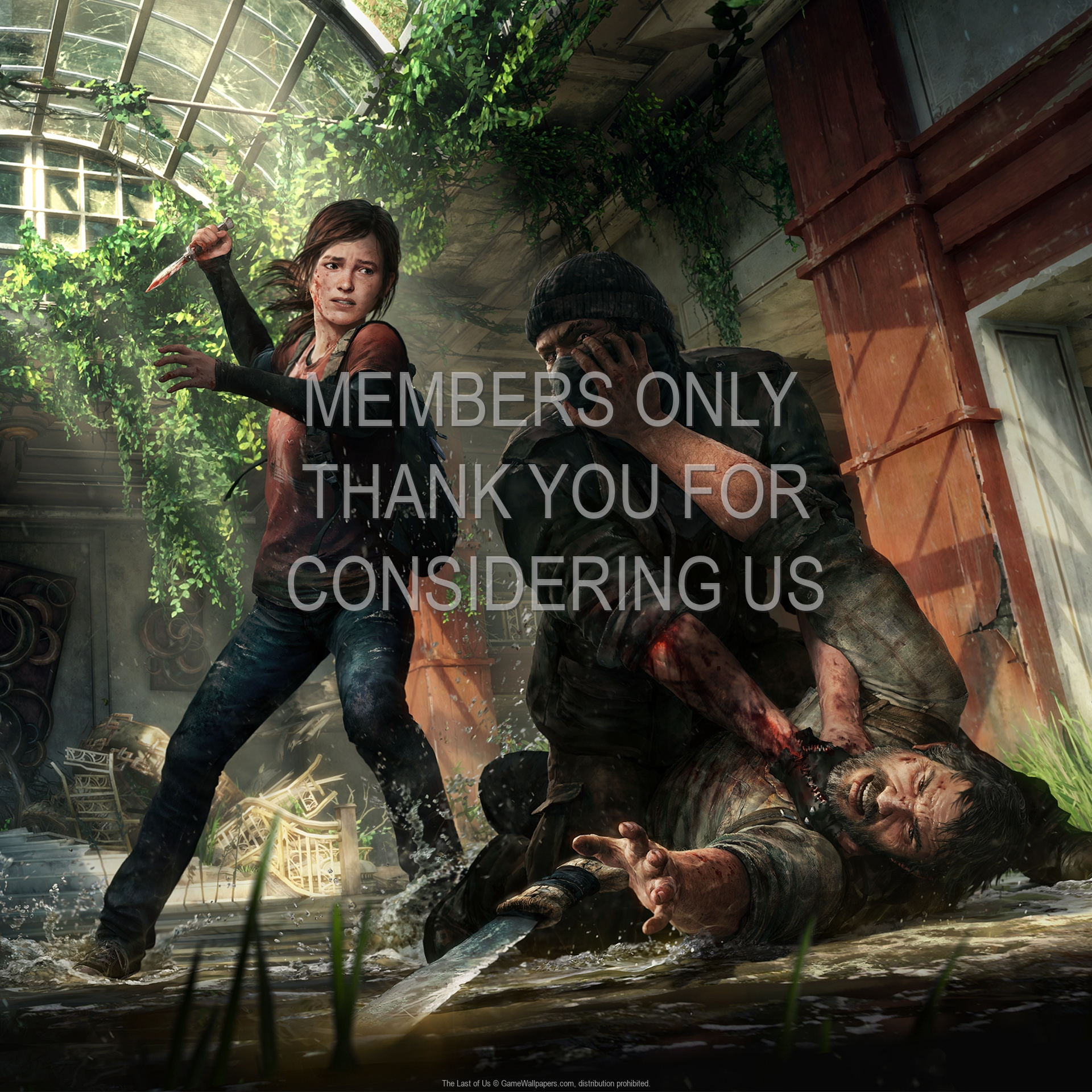 The Last of Us 1920x1080 Mobile wallpaper or background 13