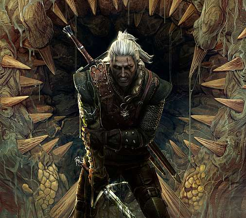 The Witcher 2: Assassins of Kings Mobile Horizontal wallpaper or background