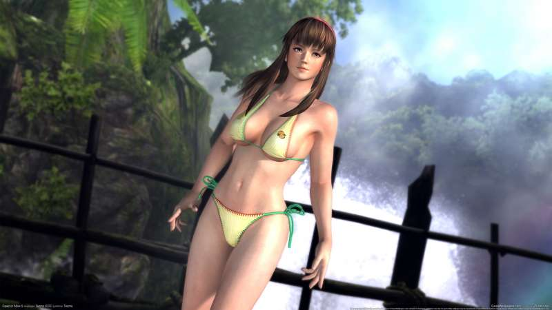 Dead or Alive 5 wallpaper or background 01