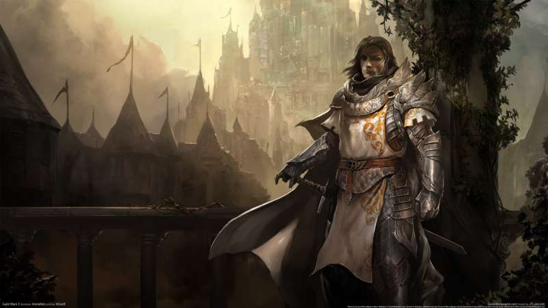 Guild Wars 2 wallpaper or background 15