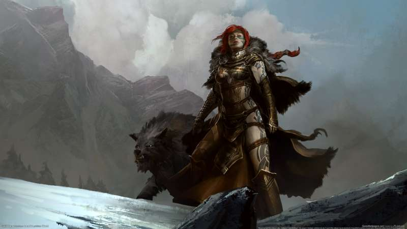 Guild Wars 2 wallpaper or background 22