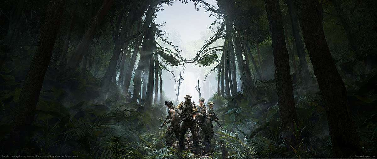 Predator: Hunting Grounds wallpaper or background
