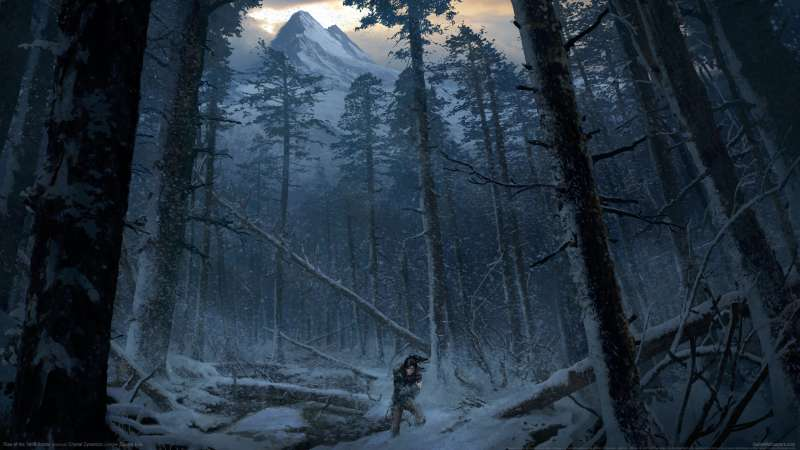 Rise of the Tomb Raider wallpaper or background 08