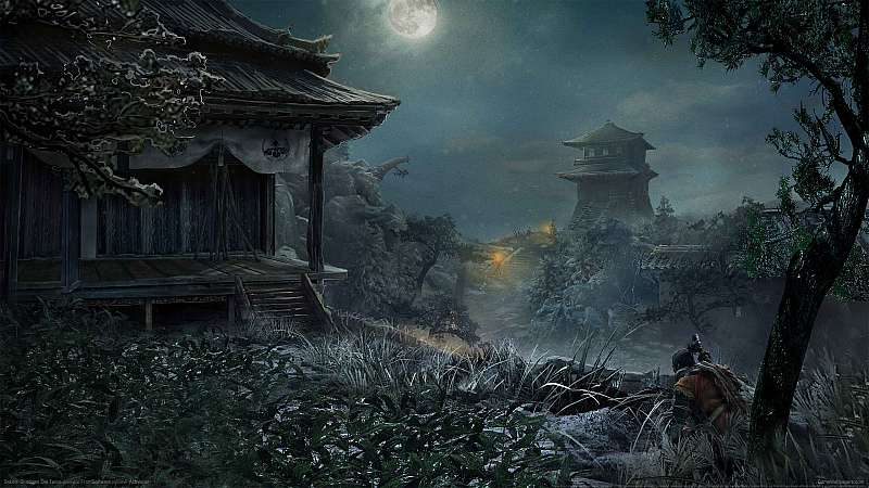 Sekiro: Shadows Die Twice wallpaper or background