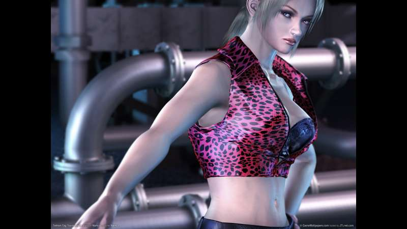 Tekken Tag Tournament wallpaper or background