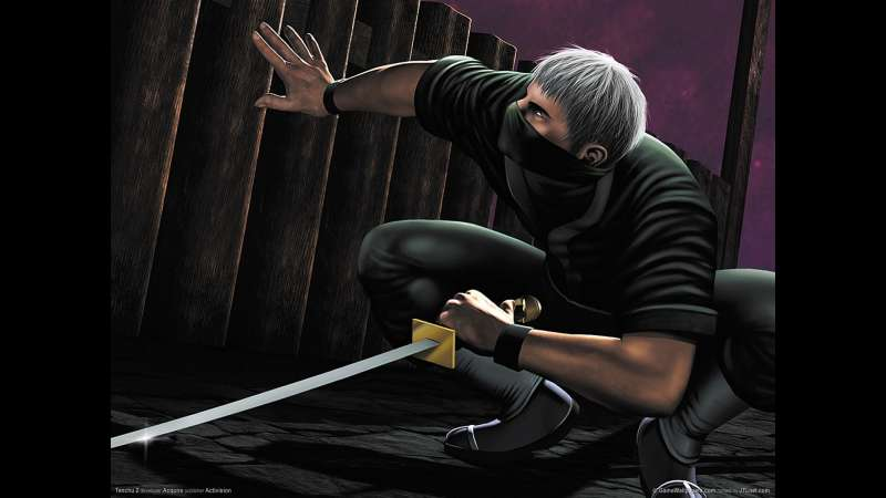 Tenchu 2 wallpaper or background 04