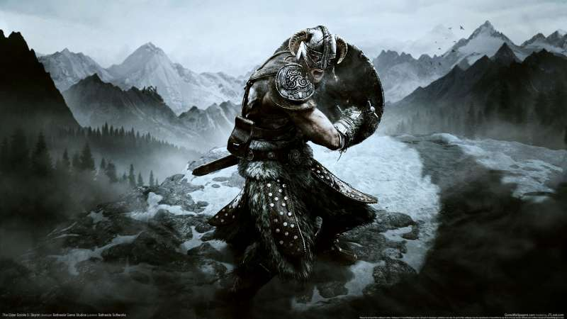 The Elder Scrolls 5: Skyrim wallpaper or background 03