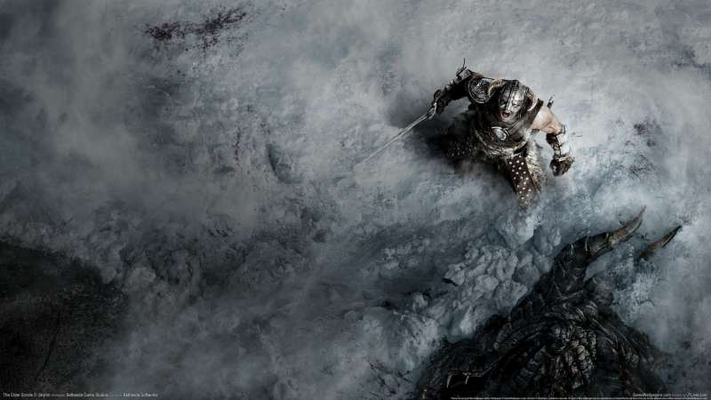 The Elder Scrolls 5: Skyrim wallpaper or background 05