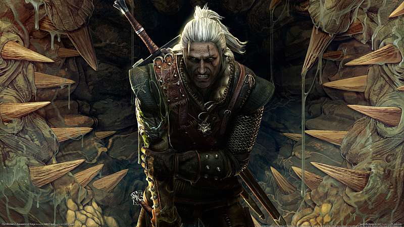 The Witcher 2: Assassins of Kings wallpaper or background