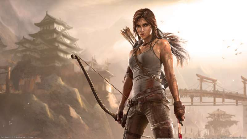 Tomb Raider wallpaper or background 11