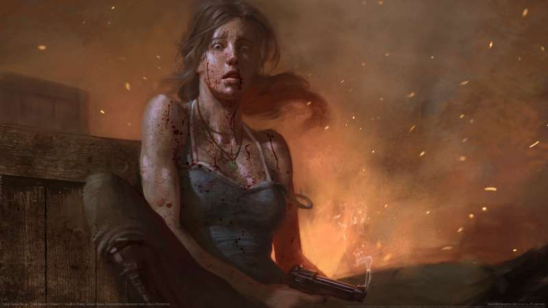 Tomb Raider fan art wallpaper or background 07