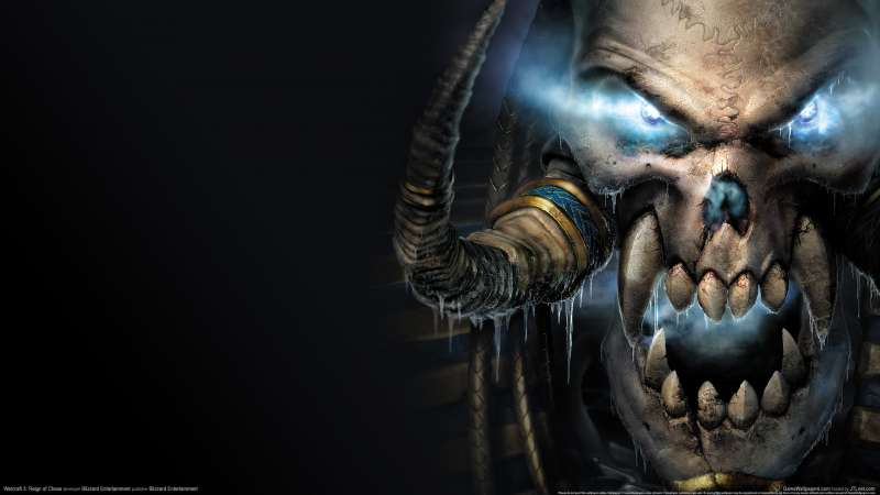 Warcraft 3: Reign of Chaos wallpaper or background 20