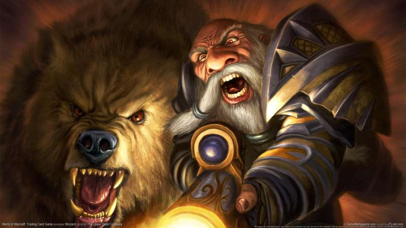 World of Warcraft: Trading Card Game wallpaper or background 12