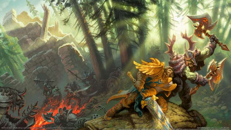 World of Warcraft: Trading Card Game wallpaper or background 14