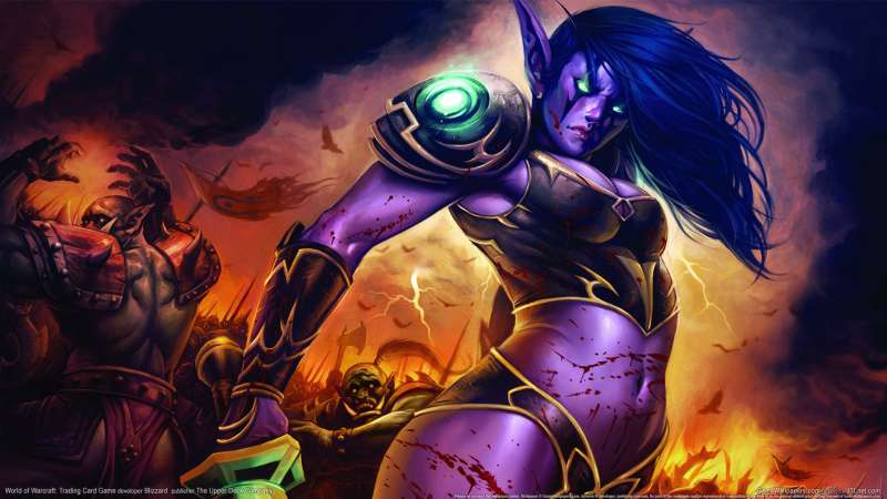 World of Warcraft: Trading Card Game wallpaper or background 27