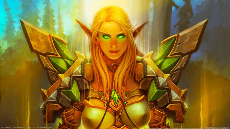 World of Warcraft: Trading Card Game wallpaper or background 43