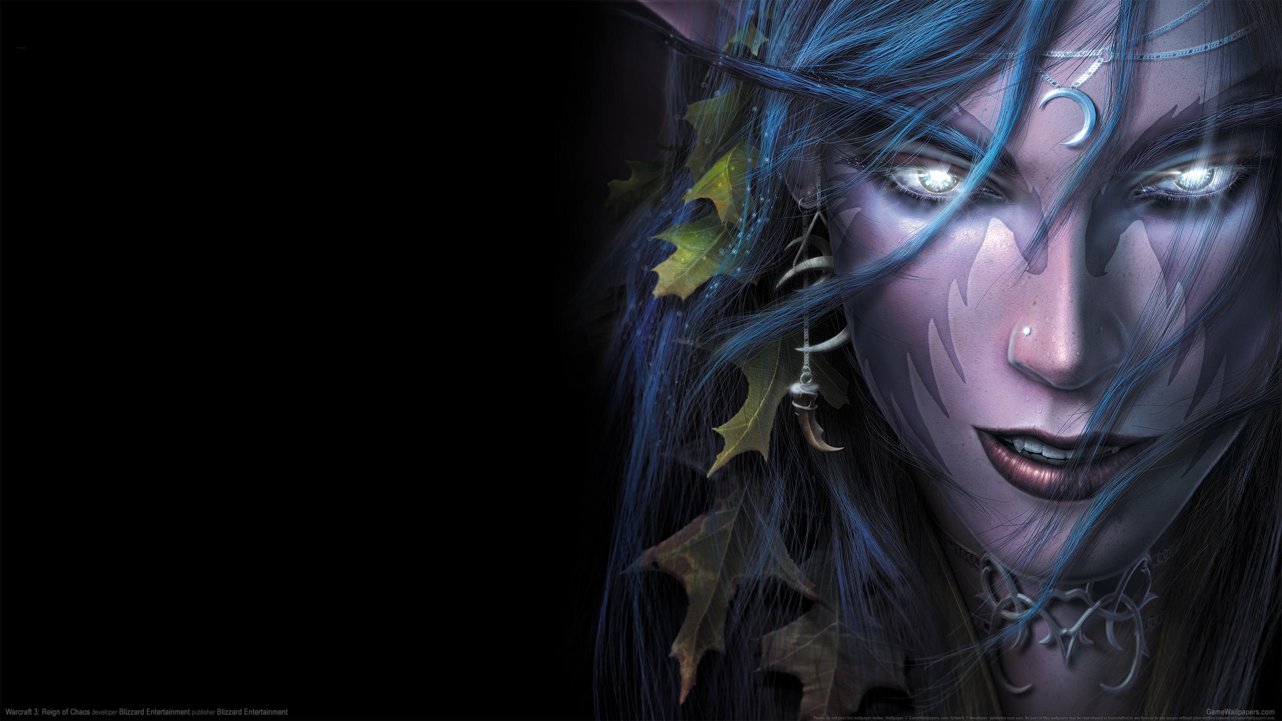 Warcraft 3: Reign of Chaos 2560x1440 Hintergrundbild 23