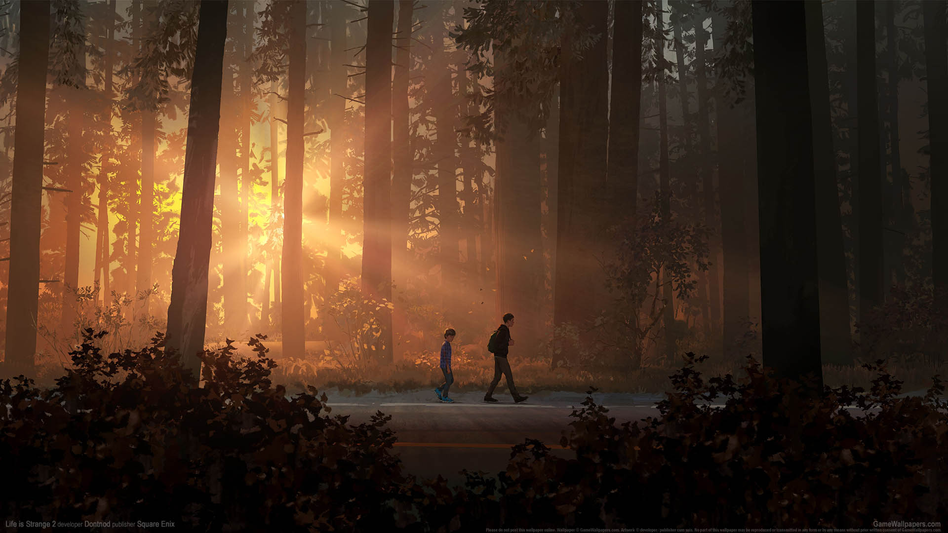 Life is Strange 2 wallpaper 01 1920x1080